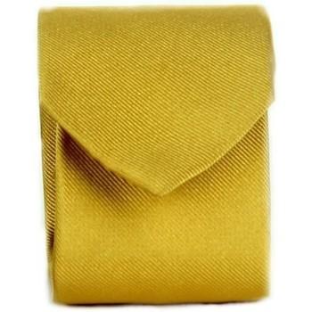 Abbigliamento Uomo Cravatte e accessori Michi D'amato CRAVATTA 002 Giallo