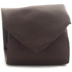 Abbigliamento Uomo Cravatte e accessori Michi D'amato CRAVATTA 001 Marrone