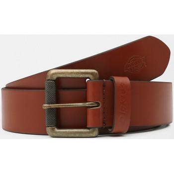 Accessori Uomo Cinture Dickies South shore leather belt Marrone