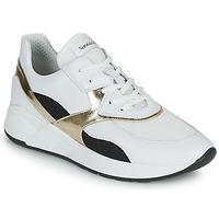 Scarpe Donna Sneakers basse NeroGiardini FILOMENE Bianco / Nero / Oro