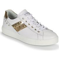 Scarpe Donna Sneakers basse NeroGiardini DRILLA Bianco / Oro
