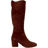 Scarpe Donna Stivaletti Bueno Shoes 20WR5104 Marrone