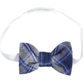 Abbigliamento Bambino Cravatte e accessori Ido 4K112 Grigio/blu