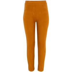 Abbigliamento Bambina Leggings Losan 024-6004AL Marrone