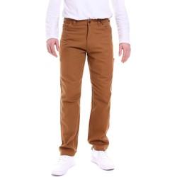 Abbigliamento Uomo Pantaloni Dickies DK121172BD01 Marrone
