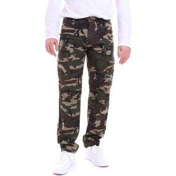 Abbigliamento Uomo Pantaloni Dickies DK121121CF01 Verde