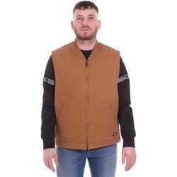 Abbigliamento Uomo Gilet / Cardigan Dickies DK0A4X8UBD01 Marrone