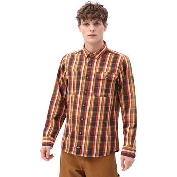 Abbigliamento Uomo Camicie maniche lunghe Dickies DK0A4X5LBD01 Marrone