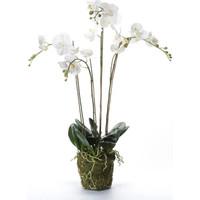 Casa Piante artificiali Emerald Orchidea Artificiale con Muschio Bianca 90 cm 20.355 Bianco
