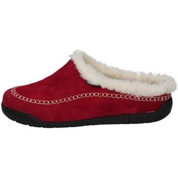 Scarpe Donna Pantofole Florance C50506-3 GERBERA