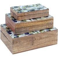 Casa Bauli, scatole di immagazzinaggio Signes Grimalt Sept. 3 Scatole Olive Marrón