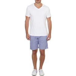 Abbigliamento Uomo Shorts / Bermuda Franklin & Marshall GAWLER Blu / Beige
