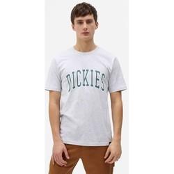 Abbigliamento Uomo T-shirt maniche corte Dickies T-shirt  Aitkin gris chiné/vert