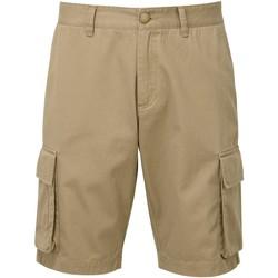 Abbigliamento Uomo Shorts / Bermuda Asquith & Fox AQ054 Polvere