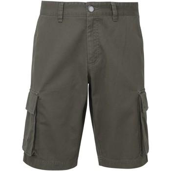 Abbigliamento Uomo Shorts / Bermuda Asquith & Fox AQ054 Grigio