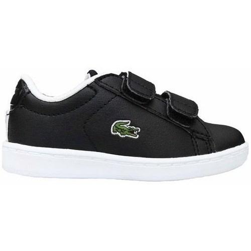 Scarpe Unisex bambino Sneakers basse Lacoste Carnaby Evo Strap Nero