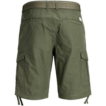 Abbigliamento Uomo Shorts / Bermuda Premium 12166338 Multicolore