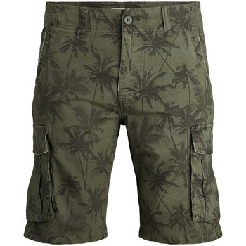 Abbigliamento Uomo Shorts / Bermuda Premium 12184937 Multicolore