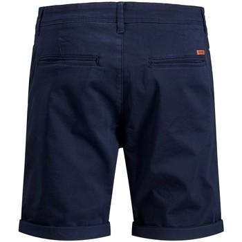Abbigliamento Uomo Shorts / Bermuda Premium 12165604 Multicolore