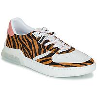 Scarpe Donna Sneakers basse Coach CITYSOLE COURT Multicolore