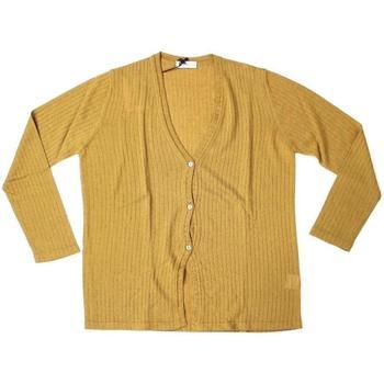 Abbigliamento Donna Gilet / Cardigan Ferrante ATRMPN-25498 Marrone
