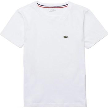 Abbigliamento Bambino T-shirt maniche corte Lacoste tj1442 nd