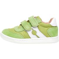 Scarpe Unisex bambino Sneakers basse Falcotto 2014666 01 Verde