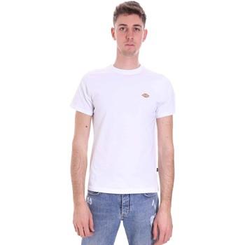Abbigliamento Uomo T-shirt maniche corte Dickies DK0A4XDAWHX1 Bianco