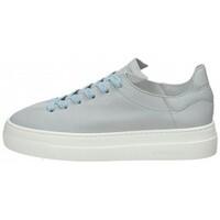 Scarpe Donna Sneakers basse Stokton Sneaker in camoscio Celeste Blu