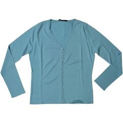 Abbigliamento Donna Maglioni Pennyblack ATRMPN-25868 Blu