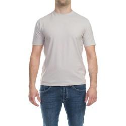 Abbigliamento Uomo T-shirt maniche corte Alpha Studio AU-4480C 1262 SASSO Panna