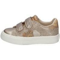 Scarpe Bambina Sneakers basse Alviero Martini 0865/0662 PLATINO