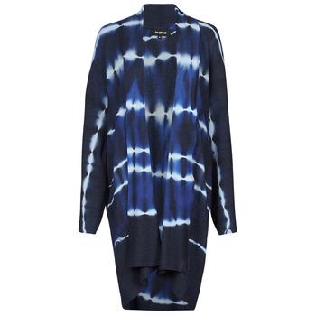 Abbigliamento Donna Gilet / Cardigan Desigual BRUMA Blu