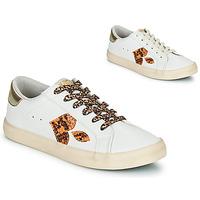 Scarpe Donna Sneakers basse Le Temps des Cerises AUSTIN Bianco / Oro