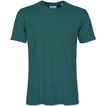Abbigliamento Uomo T-shirt maniche corte Colorful Standard CS1001 OCEAN GREEN T-shirt Uomo Uomo Ottanio Ottanio