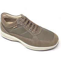 Scarpe Uomo Sneakers basse Enval scarpa da passeggio