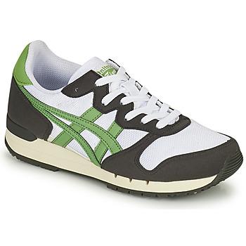 Scarpe Sneakers basse Onitsuka Tiger ALVARADO Verde / Nero / Bianco