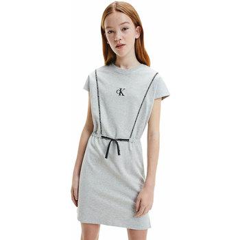 Abbigliamento Bambina Abiti corti Calvin Klein Jeans Abito Bambina  IG00964 PZ2 Grey