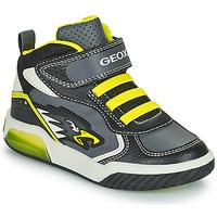Scarpe Bambino Sneakers alte Geox INEK Grigio / Verde