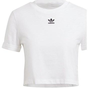 Abbigliamento Donna T-shirt maniche corte adidas Originals Crop Top Bianco