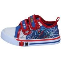 Scarpe Bambino Sneakers basse Spiderman SPP4475-09 BLU
