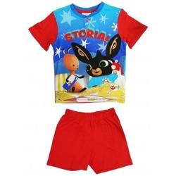 Abbigliamento Bambino Pigiami / camicie da notte Bing Pigiama Multicolore