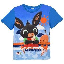 Abbigliamento Bambino T-shirt maniche corte Bing Maglietta Multicolore