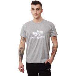 Abbigliamento Uomo T-shirt maniche corte Alpha Basics Grigio