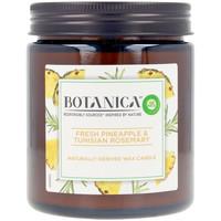 Casa Candele, diffusori Air-Wick Botanica Vela Pineapple & Tunisian Rosemary 205 Gr