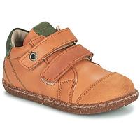 Scarpe Bambino Sneakers alte Aster WASHAN Camel / Verde