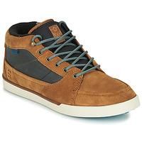 Scarpe Uomo Sneakers alte Etnies FORELAND Marrone / Grigio