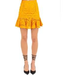 Abbigliamento Donna Gonne Weili Zheng Gonna Multicolore