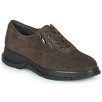 Scarpe Donna Sneakers basse Scholl BRISTOL ZIP Marrone