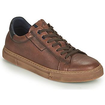 Scarpe Uomo Sneakers basse Fluchos NIKO Marrone